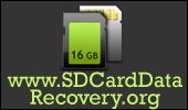 card recovery program